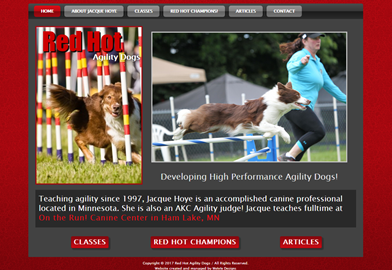 Hot Agility Dogs located in MN